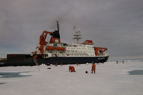 Research icebreaker Polarstern (Germany) in the Arctic