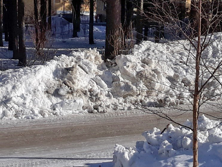 melting snow on the side of the road.jpg